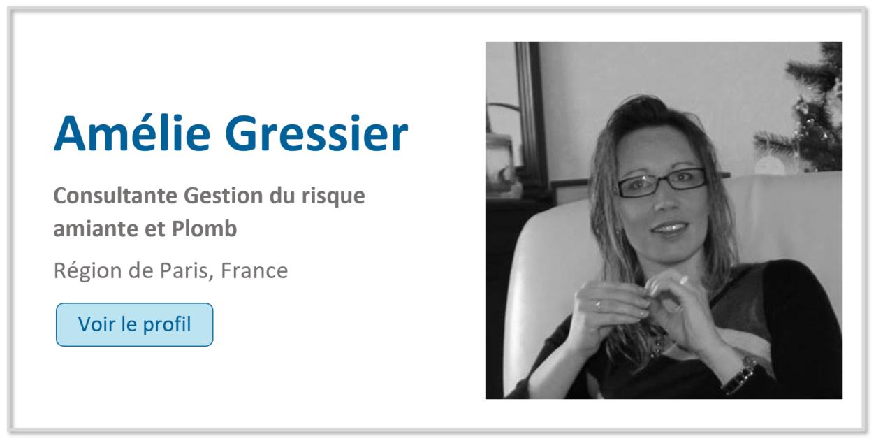 Linkedin Amélie Gressier